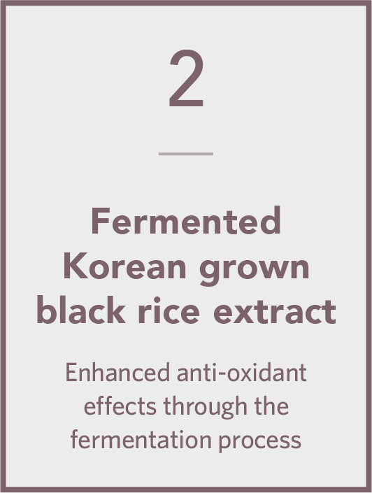 Fermented Korean Grown Black Rice Extract