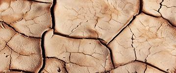 Dry Skin 4