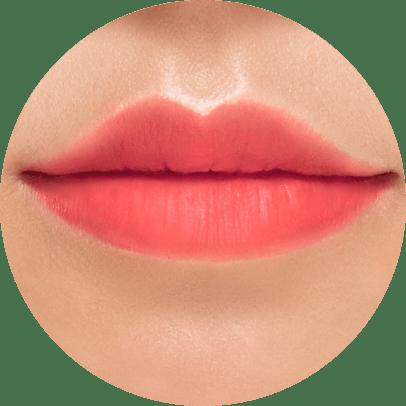 Shy Lip Me@2x 2