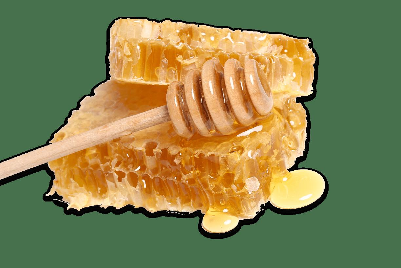 BG Honey